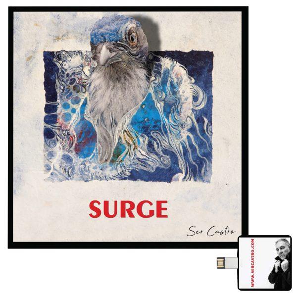 álbum Surge y usb
